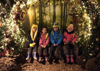 Reception EYFS School Trip to Willows Farm, December 2018