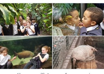 Kerr and Austen Class visit The Living Forest