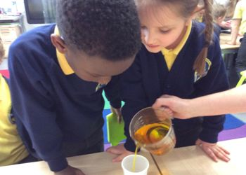 Science Week at Harpenden Academy