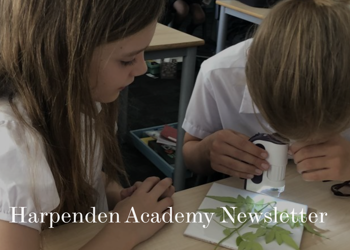 18th September 2020 School Newsletter